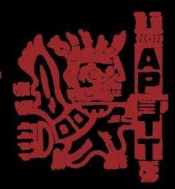 Asociación Peruana de Técnicos Textiles
